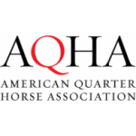 American Quarter Horse Association - AQHA Horse Show