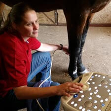 Reproduction services at Burleson Equine Hospital